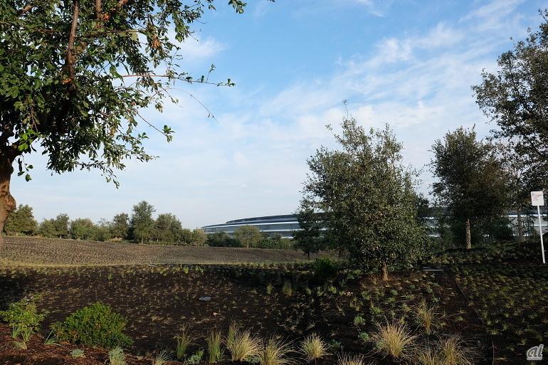 Apple Parkのメインの社屋は、おなじみとなった円盤状の「スペースシップ」と呼ばれる建物だ