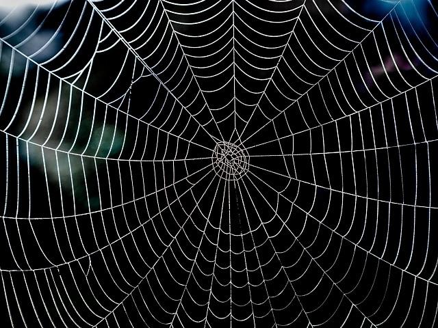 新ランサムウェア「Spider」、ファイル削除の恐れも--ボスニアなど標的?