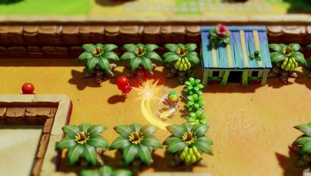 ゼルダの伝説 夢をみる島の画像 p1_21