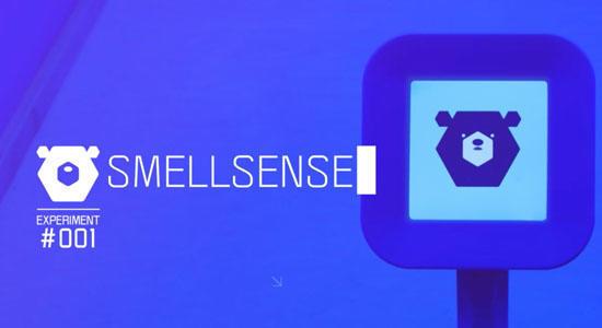 SmellSense