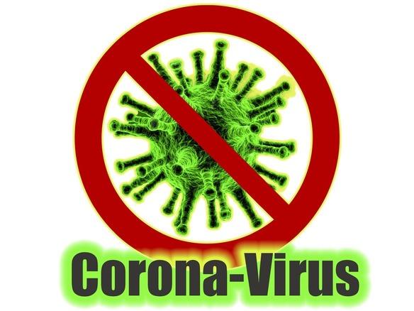 中国 新しい ウイルス