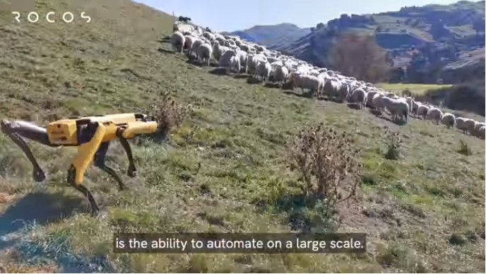 Utilizing Spot for agriculture and livestock [Source: Rocos / YouTube]