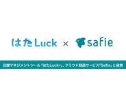 店舗マネジメントツール「はたLuck」、クラウド録画サービス「Safie」と連携